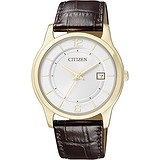 Citizen BD0022-08A, 078204